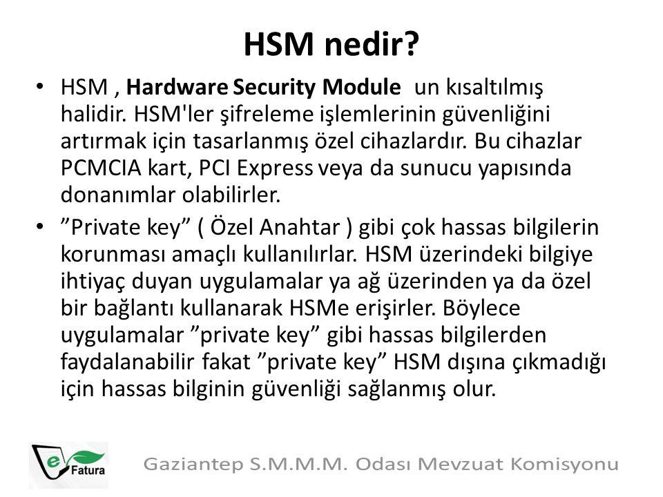 HSM nedir