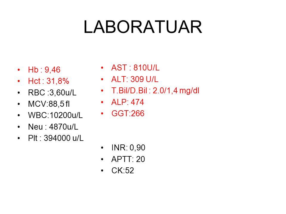 LABORATUAR Hb : 9,46 AST : 810U/L ALT: 309 U/L Hct : 31,8%