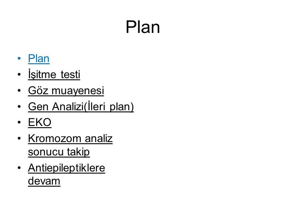Plan Plan İşitme testi Göz muayenesi Gen Analizi(İleri plan) EKO