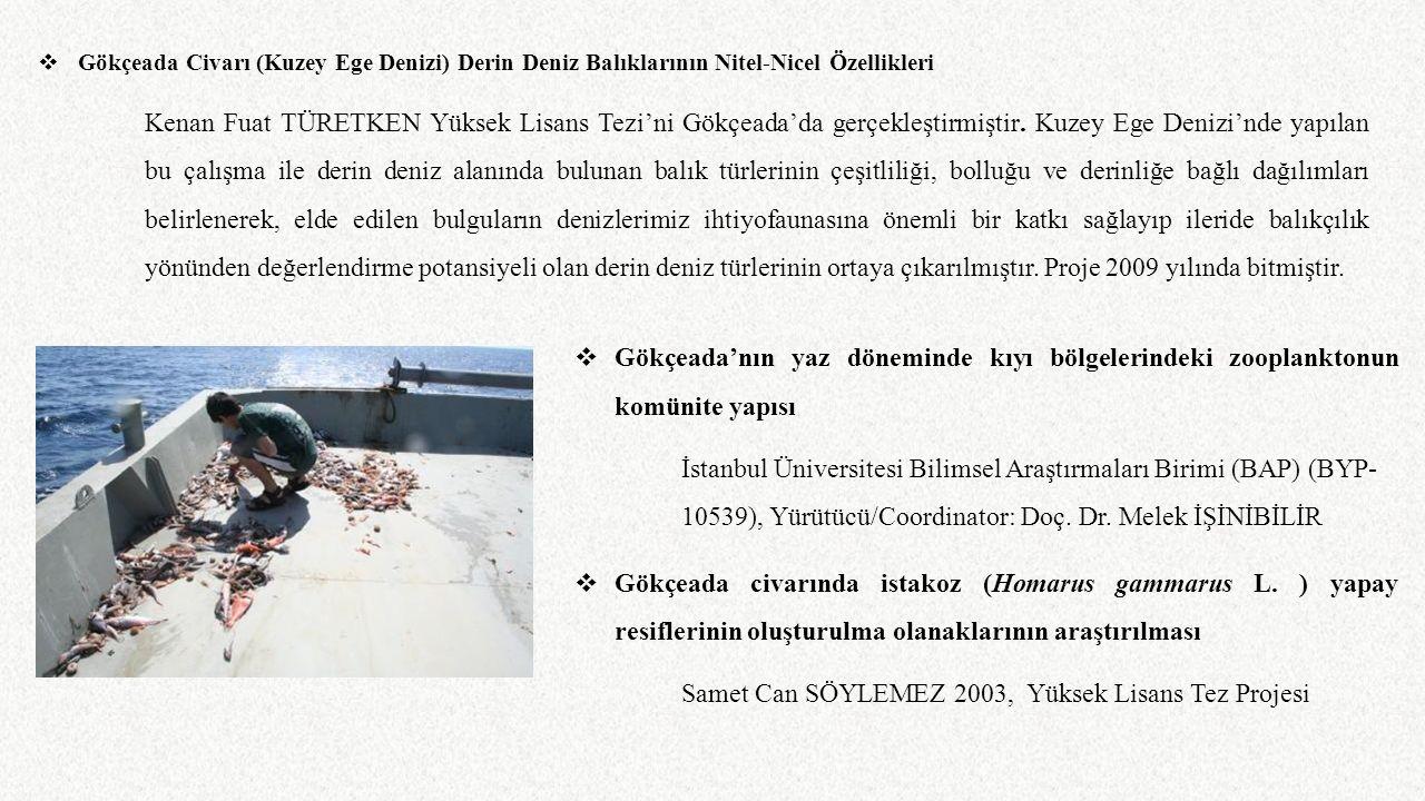 Samet Can SÖYLEMEZ 2003, Yüksek Lisans Tez Projesi