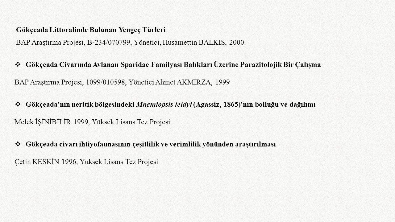 BAP Araştırma Projesi, 1099/010598, Yönetici Ahmet AKMIRZA, 1999