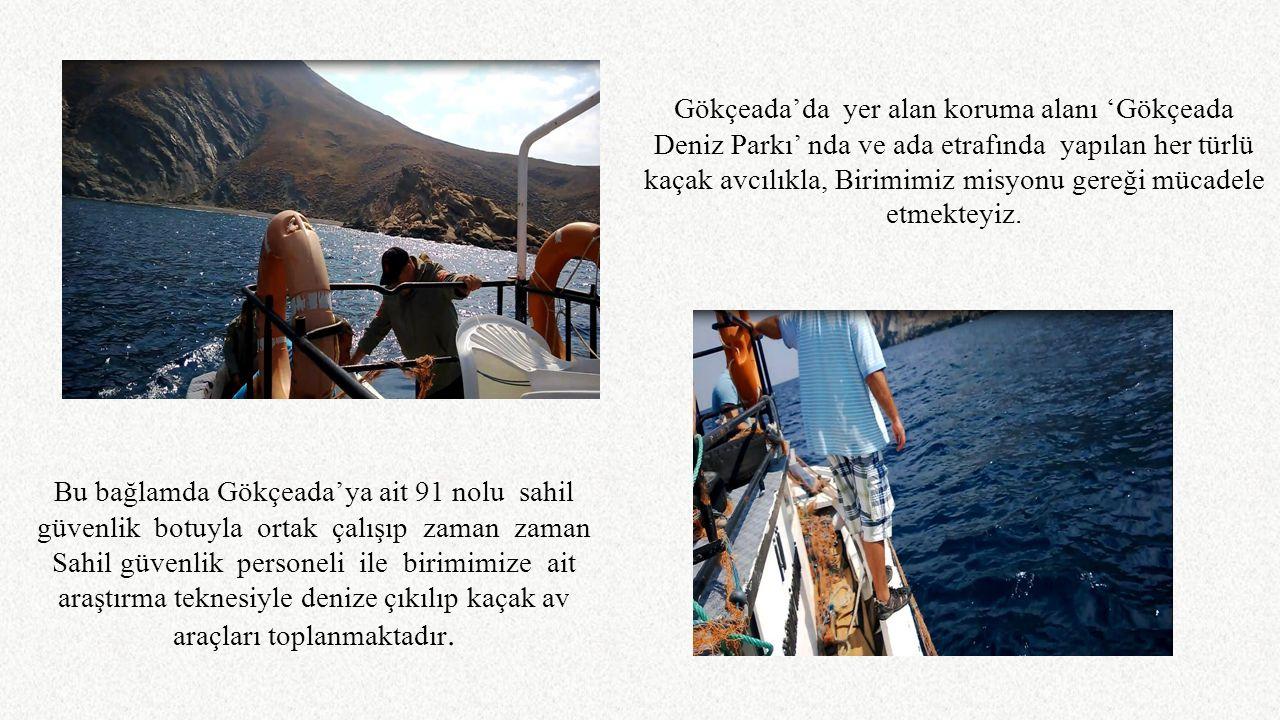 Gökçeada'da yer alan koruma alanı 'Gökçeada Deniz Parkı' nda ve ada etrafında yapılan her türlü kaçak avcılıkla, Birimimiz misyonu gereği mücadele etmekteyiz.