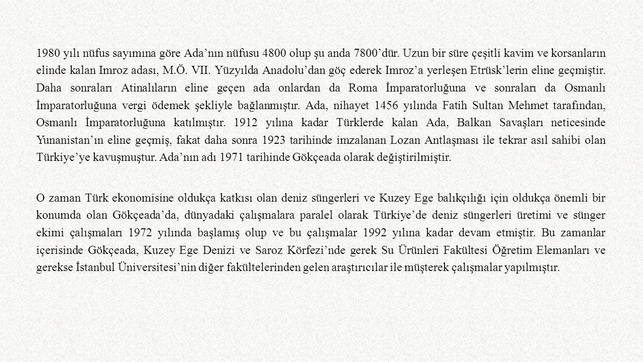1980 yılı nüfus sayımına göre Ada'nın nüfusu 4800 olup şu anda 7800'dür. Uzun bir süre çeşitli kavim ve korsanların elinde kalan Imroz adası, M.Ö. VII. Yüzyılda Anadolu'dan göç ederek Imroz'a yerleşen Etrüsk'lerin eline geçmiştir. Daha sonraları Atinalıların eline geçen ada onlardan da Roma İmparatorluğuna ve sonraları da Osmanlı İmparatorluğuna vergi ödemek şekliyle bağlanmıştır. Ada, nihayet 1456 yılında Fatih Sultan Mehmet tarafından, Osmanlı İmparatorluğuna katılmıştır. 1912 yılına kadar Türklerde kalan Ada, Balkan Savaşları neticesinde Yunanistan'ın eline geçmiş, fakat daha sonra 1923 tarihinde imzalanan Lozan Antlaşması ile tekrar asıl sahibi olan Türkiye'ye kavuşmuştur. Ada'nın adı 1971 tarihinde Gökçeada olarak değiştirilmiştir.
