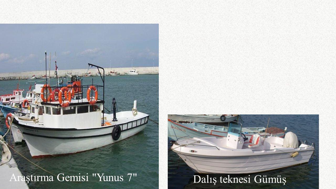 Araştırma Gemisi Yunus 7