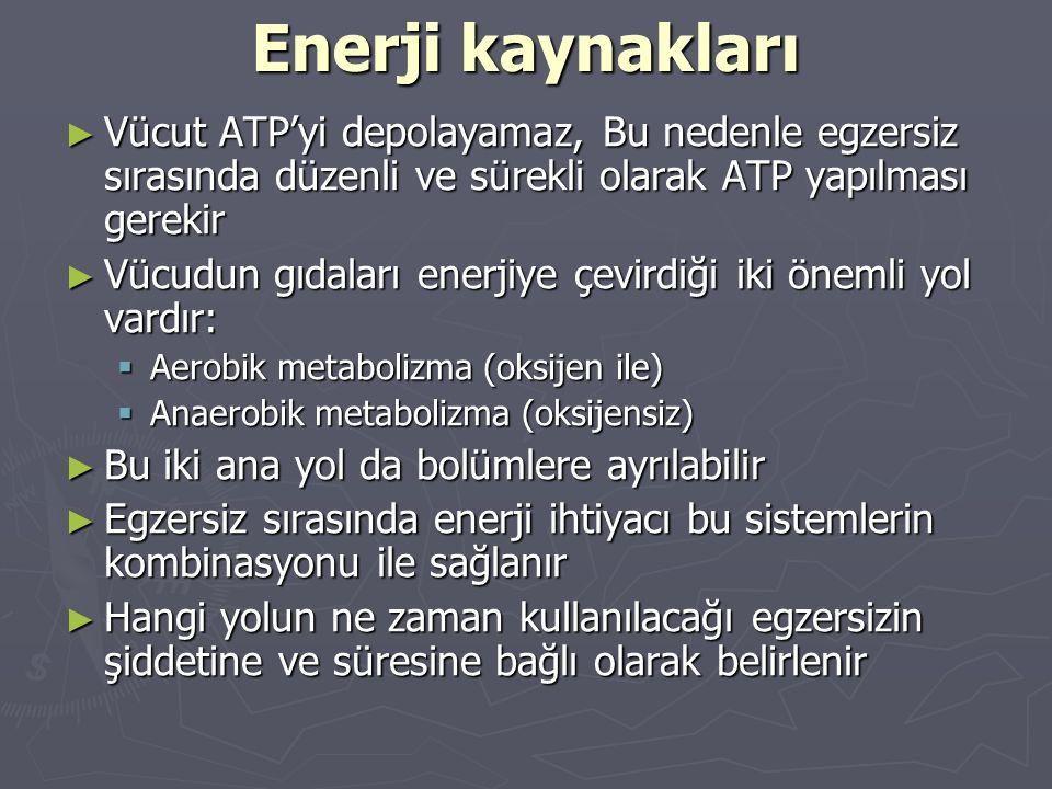 Enerji kaynakları Vücut ATP'yi depolayamaz, Bu nedenle egzersiz sırasında düzenli ve sürekli olarak ATP yapılması gerekir.