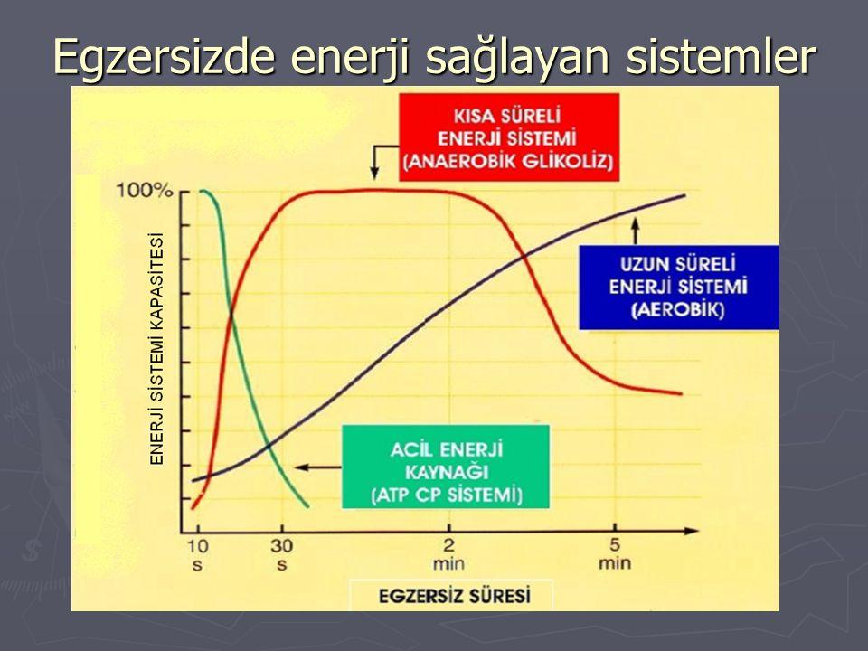 Egzersizde enerji sağlayan sistemler