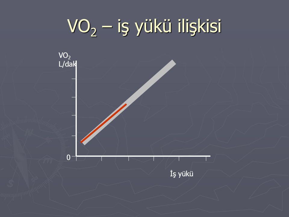 VO2 – iş yükü ilişkisi VO2 L/dak İş yükü