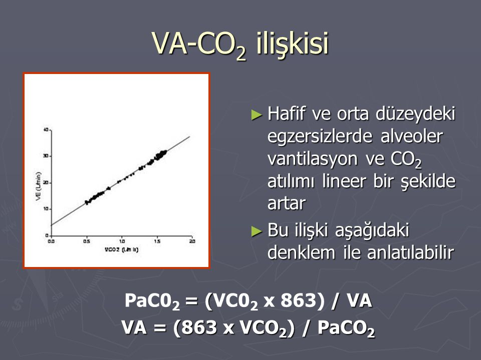 VA-CO2 ilişkisi Hafif ve orta düzeydeki egzersizlerde alveoler vantilasyon ve CO2 atılımı lineer bir şekilde artar.
