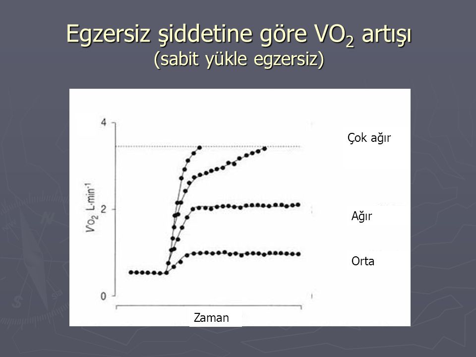 Egzersiz şiddetine göre VO2 artışı (sabit yükle egzersiz)