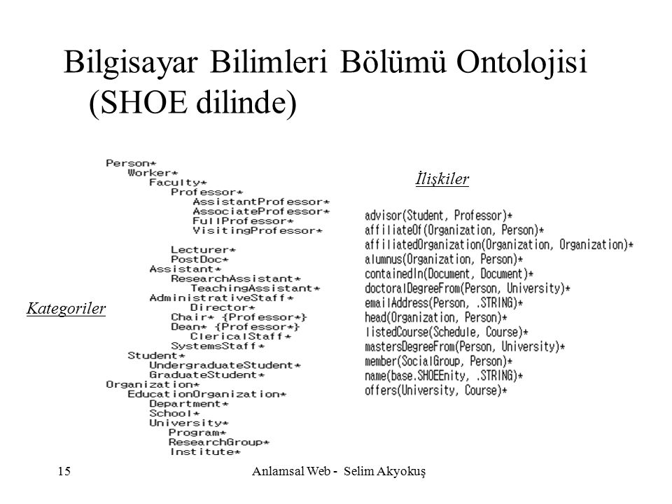 Anlamsal Web - Selim Akyokuş
