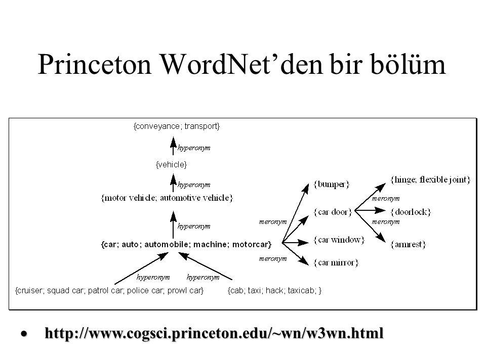 Princeton WordNet'den bir bölüm