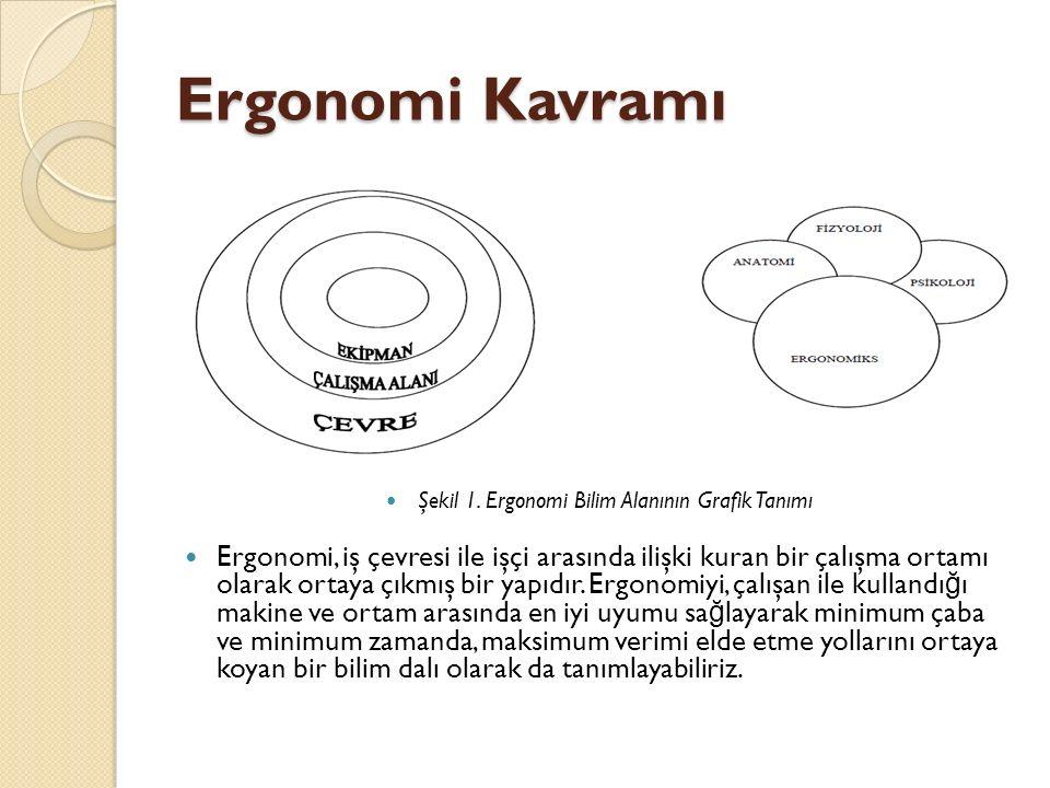 Şekil 1. Ergonomi Bilim Alanının Grafik Tanımı