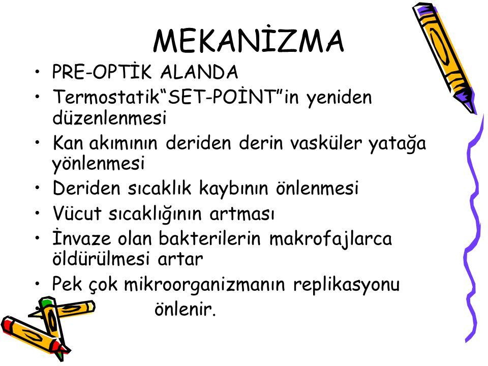 MEKANİZMA PRE-OPTİK ALANDA