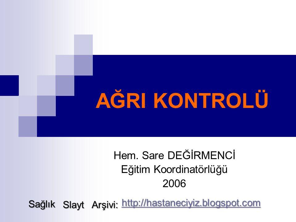 Hem. Sare DEĞİRMENCİ Eğitim Koordinatörlüğü 2006