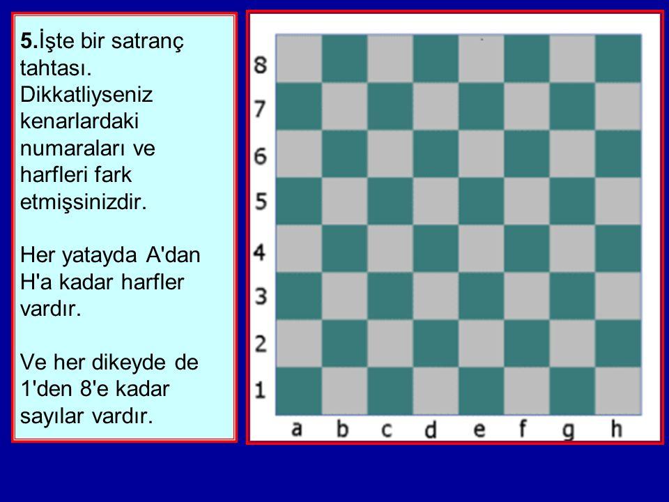 5. İşte bir satranç tahtası