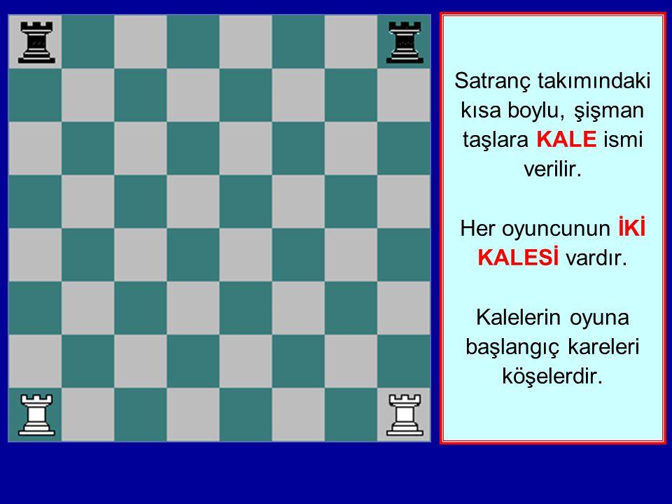 Satranç takımındaki kısa boylu, şişman taşlara KALE ismi verilir