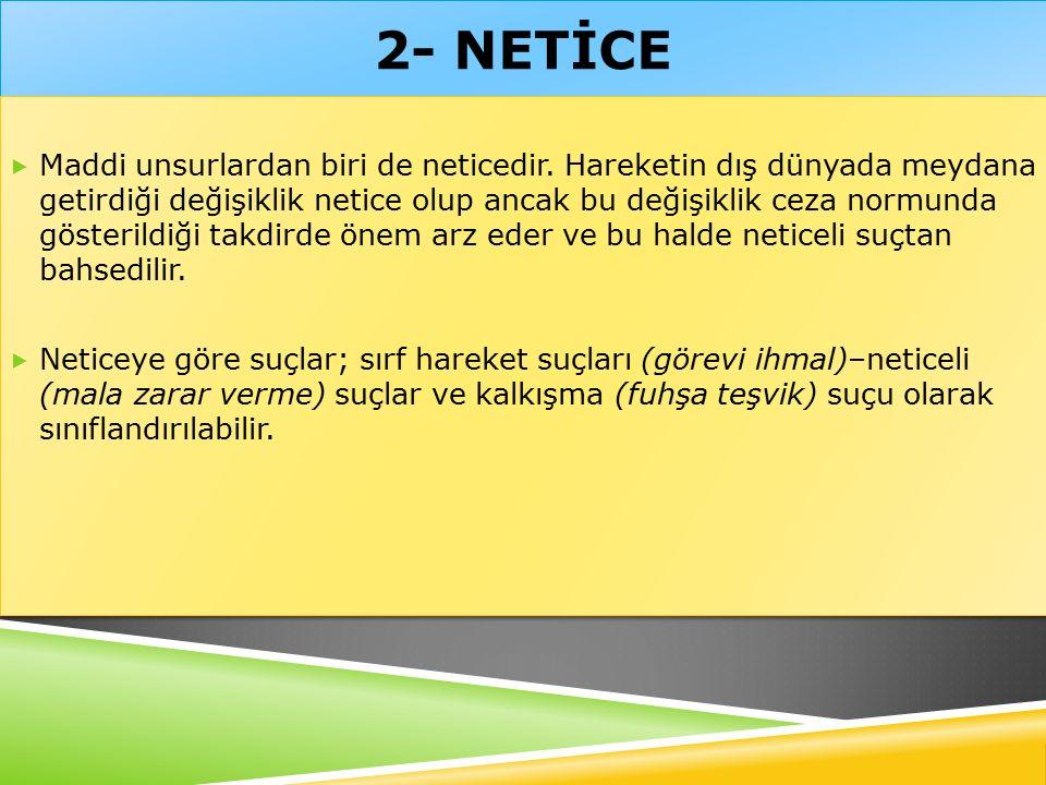 2- NETİCE