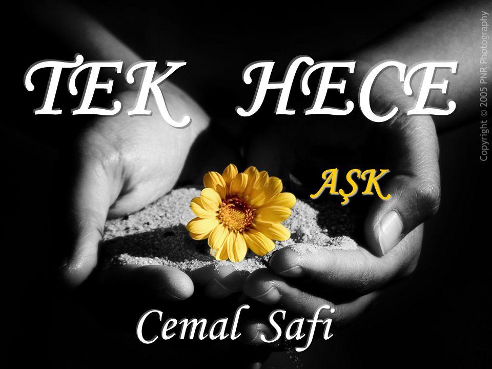 TEK HECE AŞK Cemal Safi