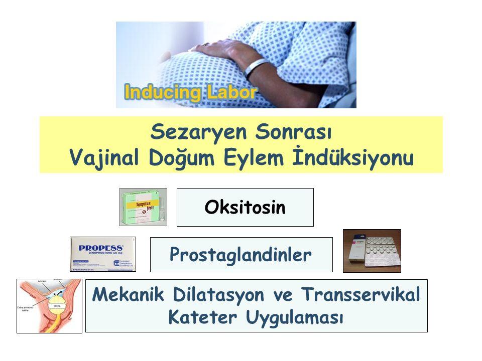 Sezaryen Sonrası Vajinal Doğum Eylem İndüksiyonu