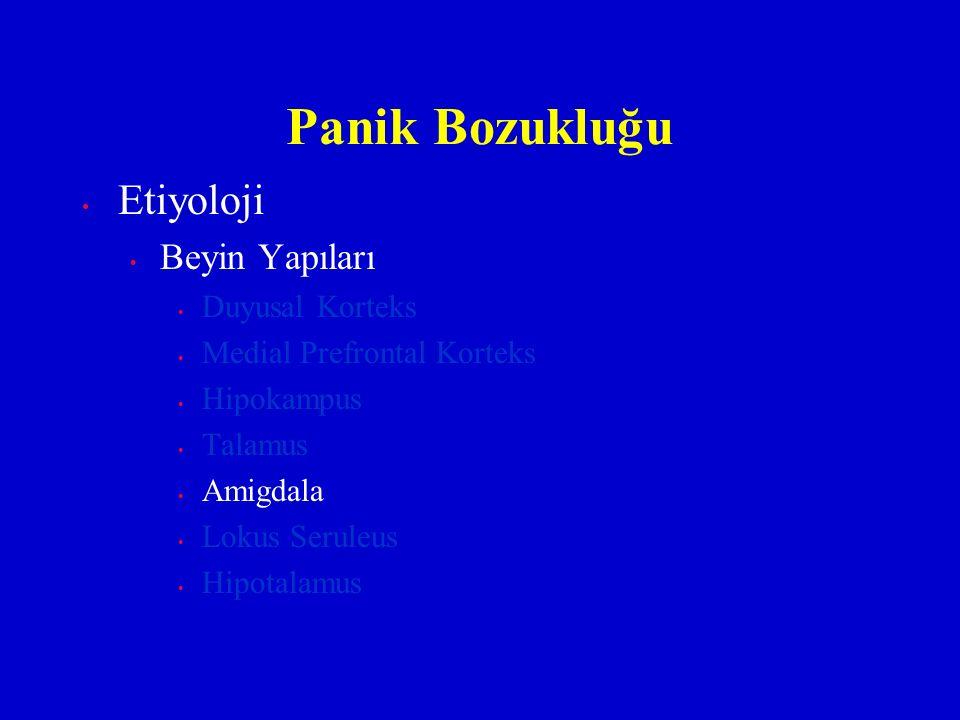 Panik Bozukluğu Etiyoloji Beyin Yapıları Duyusal Korteks