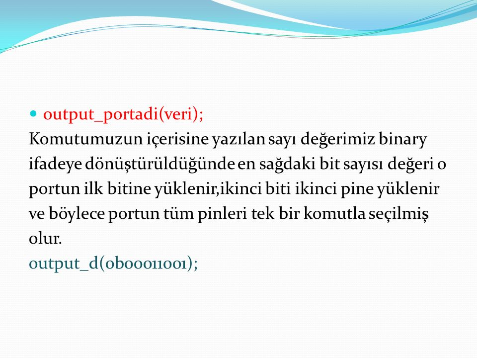 output_portadi(veri);