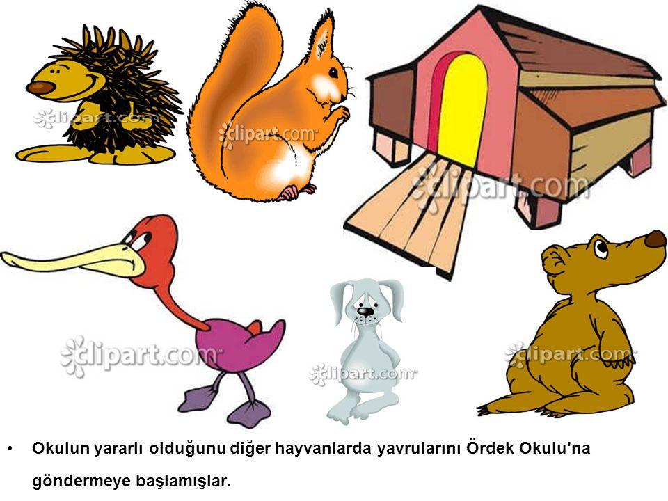 Okulun yararlı olduğunu diğer hayvanlarda yavrularını Ördek Okulu na göndermeye başlamışlar.