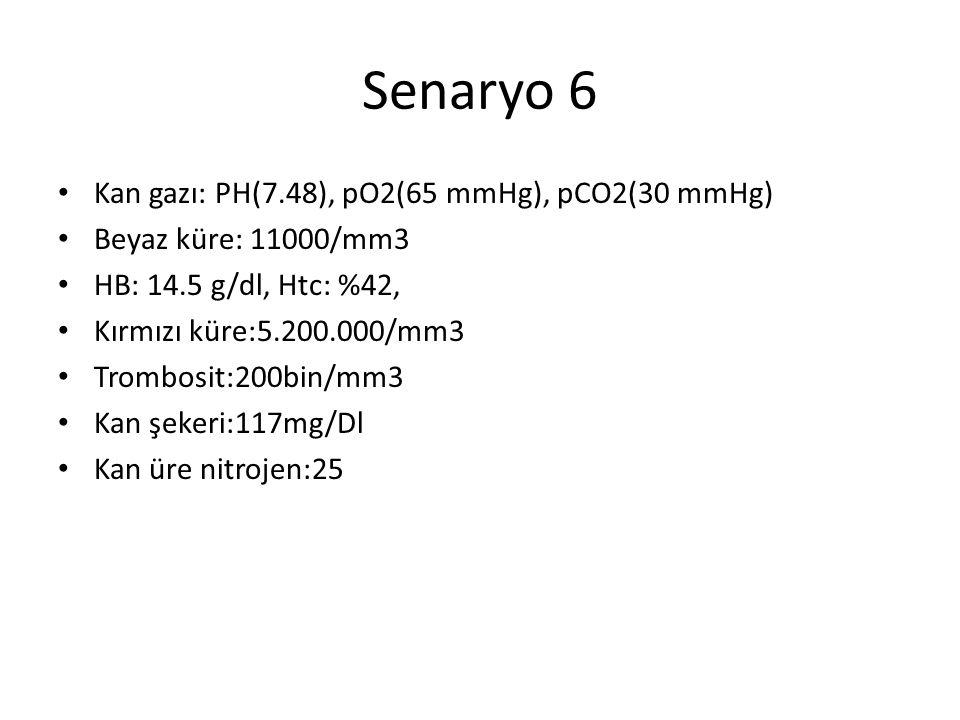 Senaryo 6 Kan gazı: PH(7.48), pO2(65 mmHg), pCO2(30 mmHg)
