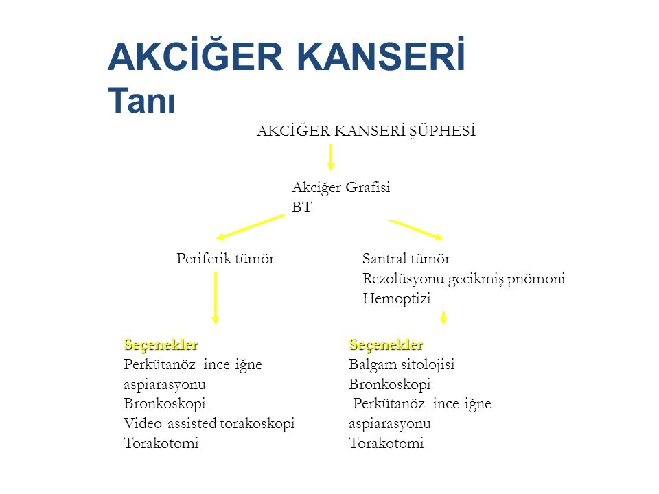 AKCİĞER KANSERİ Tanı AKCİĞER KANSERİ ŞÜPHESİ Akciğer Grafisi BT