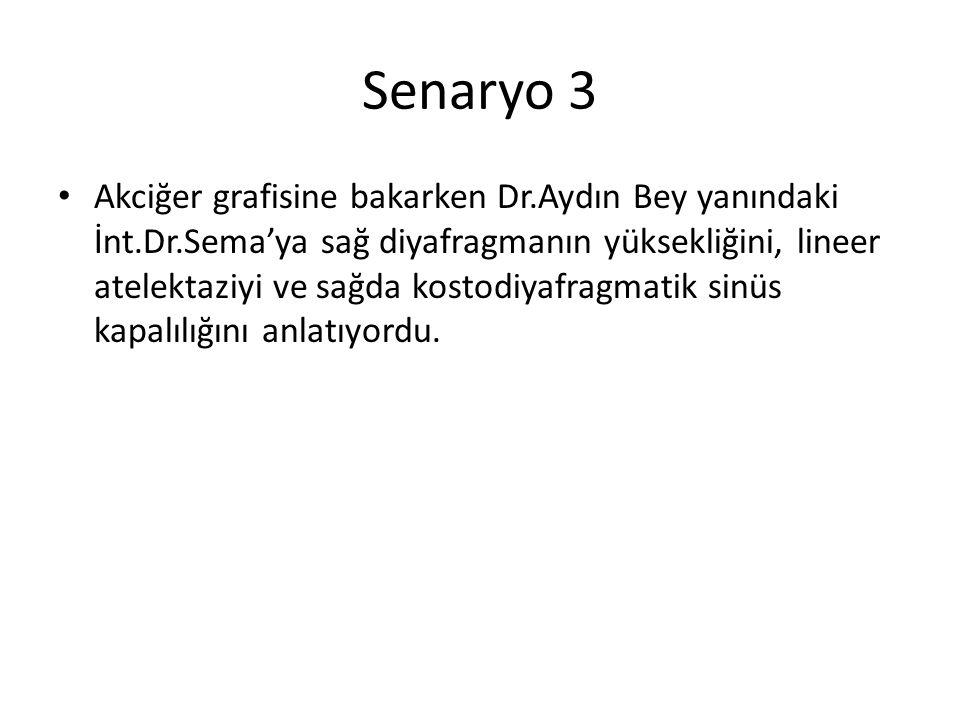 Senaryo 3