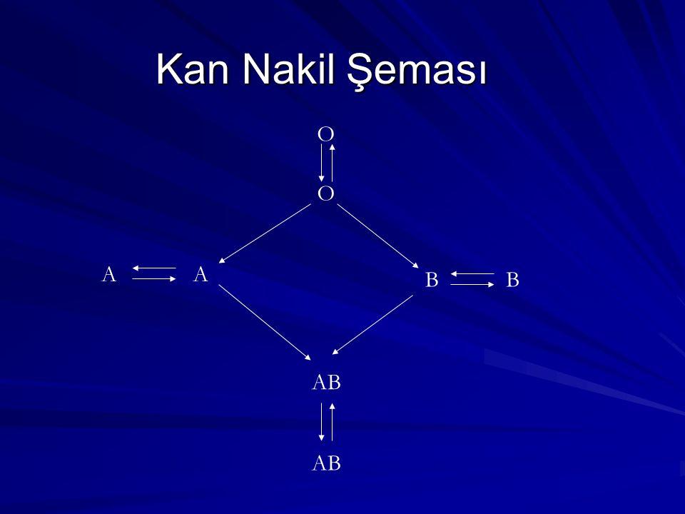 Kan Nakil Şeması O A AB B