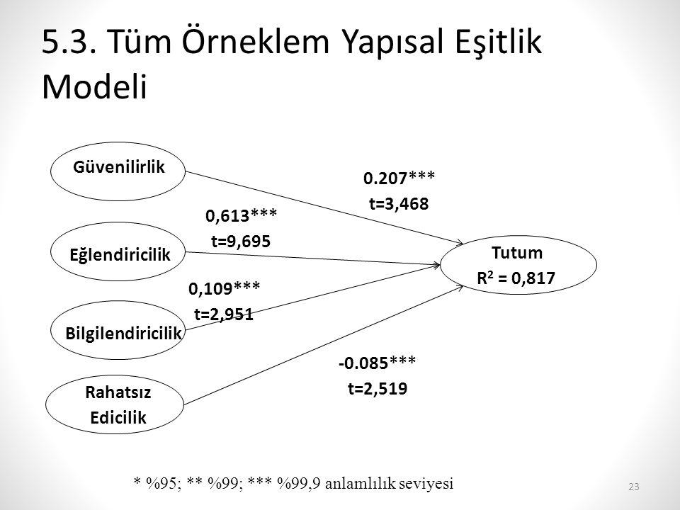 5.3. Tüm Örneklem Yapısal Eşitlik Modeli