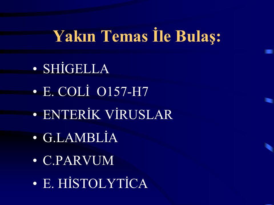 Yakın Temas İle Bulaş: SHİGELLA E. COLİ O157-H7 ENTERİK VİRUSLAR