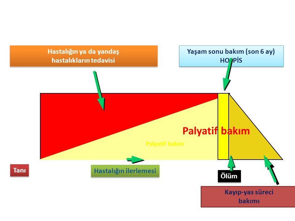 Palyatif bakım Hastalığın ya da yandaş hastalıkların tedavisi