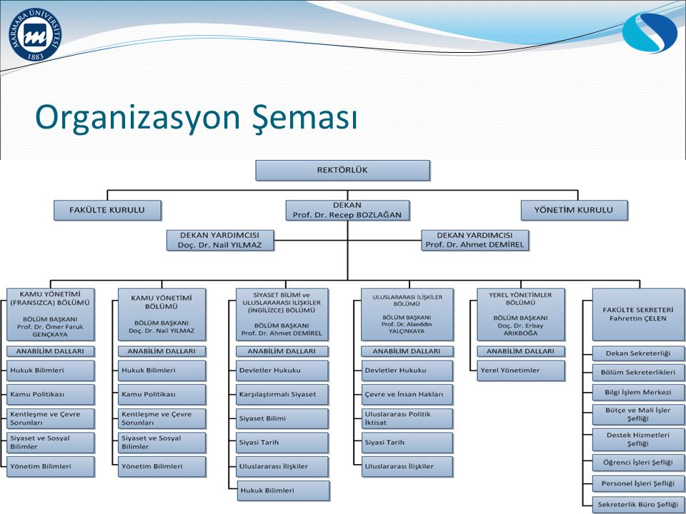 Organizasyon Şeması