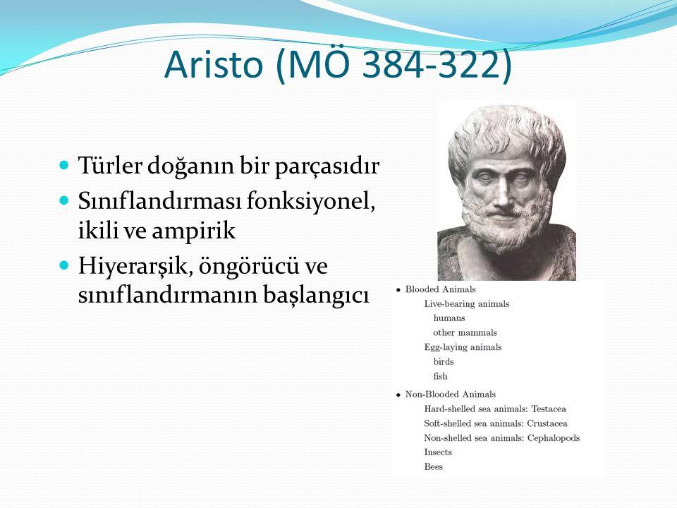 Aristo (MÖ 384-322) Türler doğanın bir parçasıdır