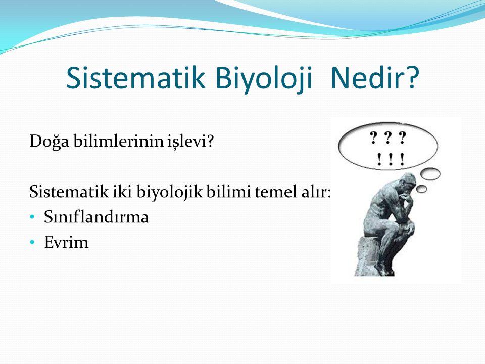 Sistematik Biyoloji Nedir