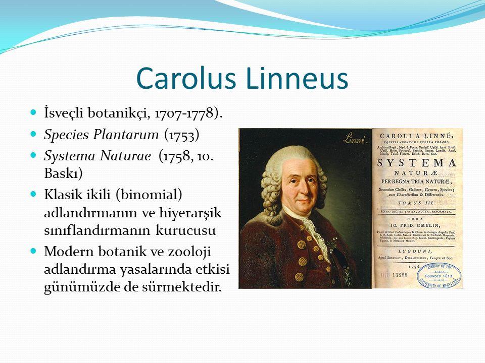 Carolus Linneus İsveçli botanikçi, 1707-1778).