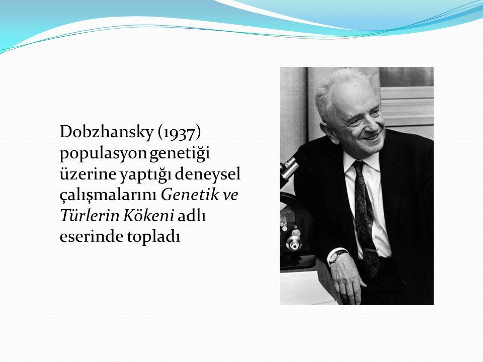 Dobzhansky (1937) populasyon genetiği üzerine yaptığı deneysel çalışmalarını Genetik ve Türlerin Kökeni adlı eserinde topladı