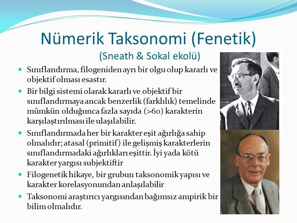 Nümerik Taksonomi (Fenetik) (Sneath & Sokal ekolü)