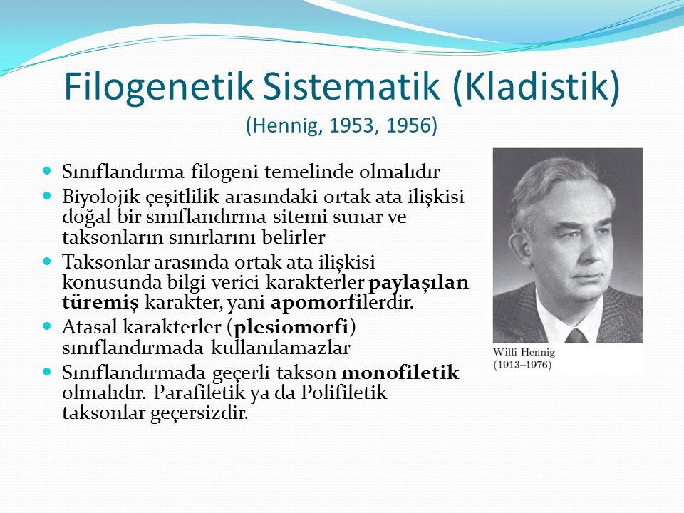 Filogenetik Sistematik (Kladistik) (Hennig, 1953, 1956)