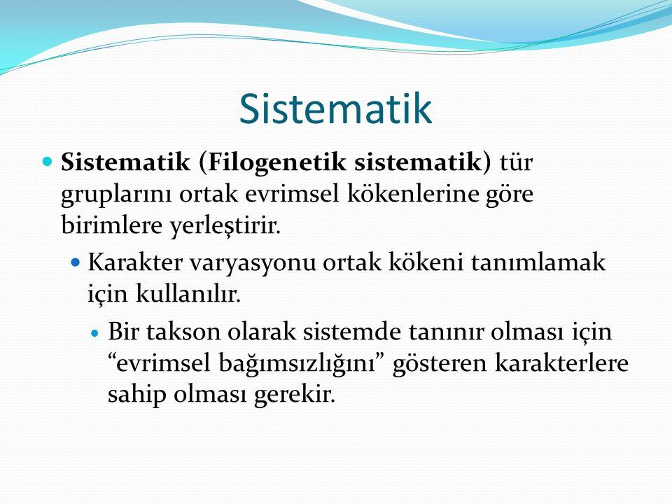 Sistematik Sistematik (Filogenetik sistematik) tür gruplarını ortak evrimsel kökenlerine göre birimlere yerleştirir.