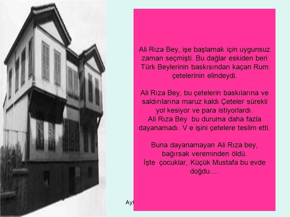 Ali Rıza Bey, işe başlamak için uygunsuz zaman seçmişti