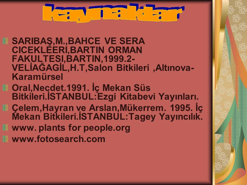 kaynaklar SARIBAŞ,M.,BAHCE VE SERA CICEKLEERI,BARTIN ORMAN FAKULTESI,BARTIN,1999.2-VELİAĞAGİL,H.T,Salon Bitkileri ,Altınova-Karamürsel.