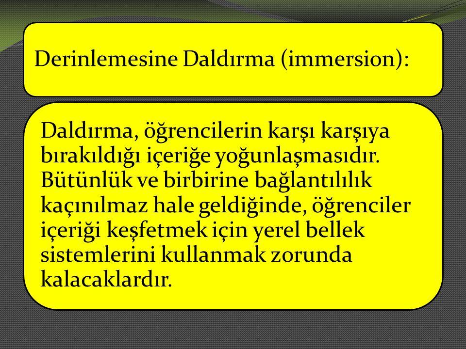 Derinlemesine Daldırma (immersion):