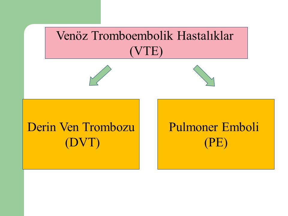 Venöz Tromboembolik Hastalıklar