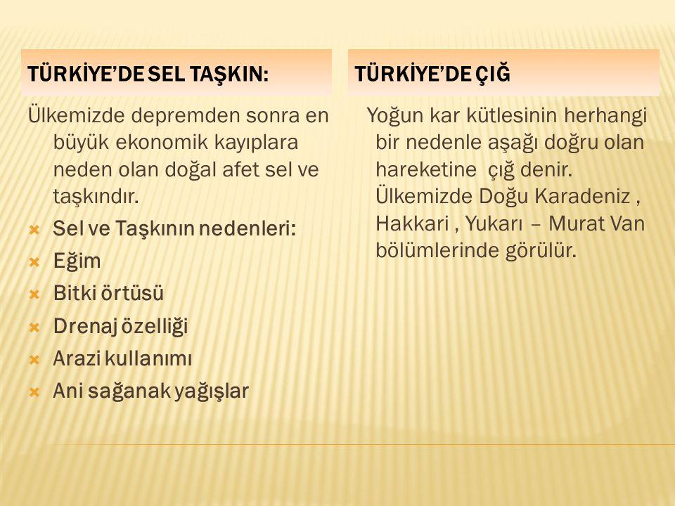 TÜRKİYE'DE SEL TAŞKIN: