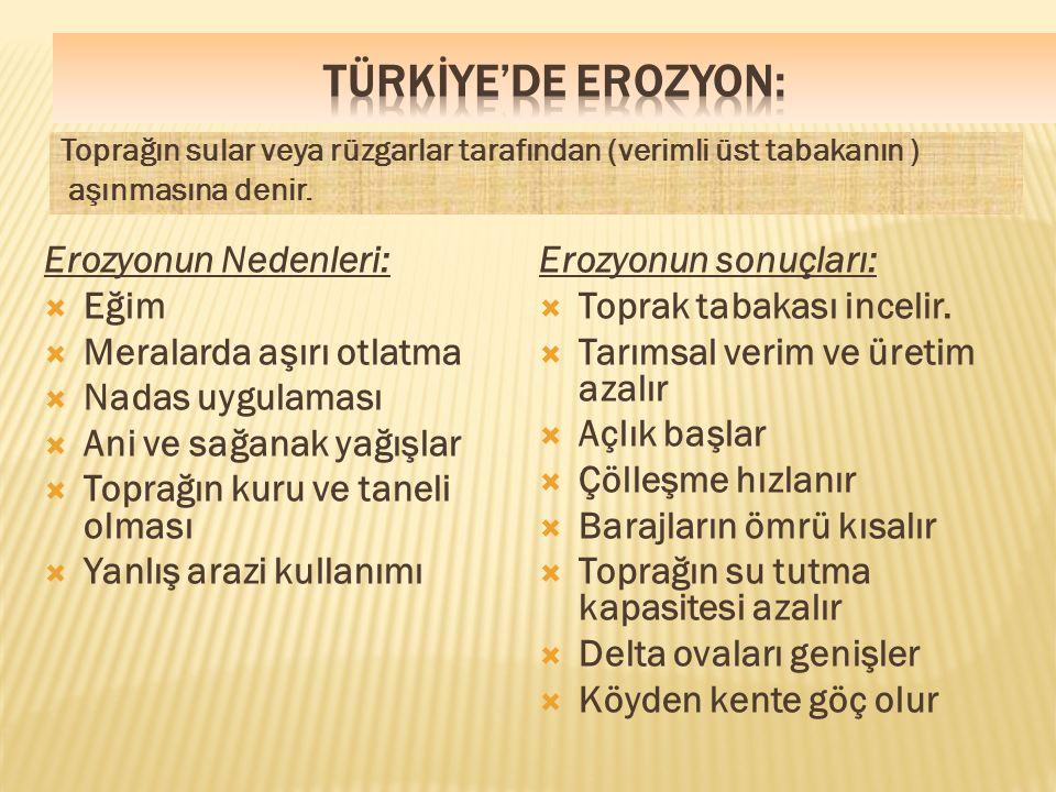 TÜRKİYE'DE EROZYON: Erozyonun Nedenleri: Eğim Meralarda aşırı otlatma