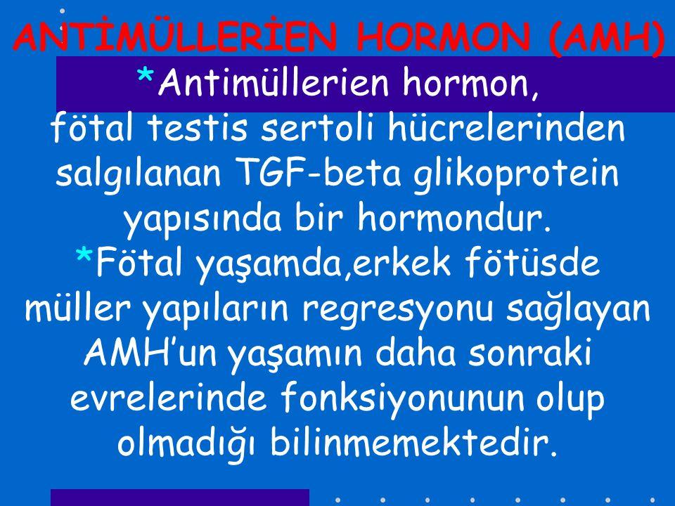 ANTİMÜLLERİEN HORMON (AMH)
