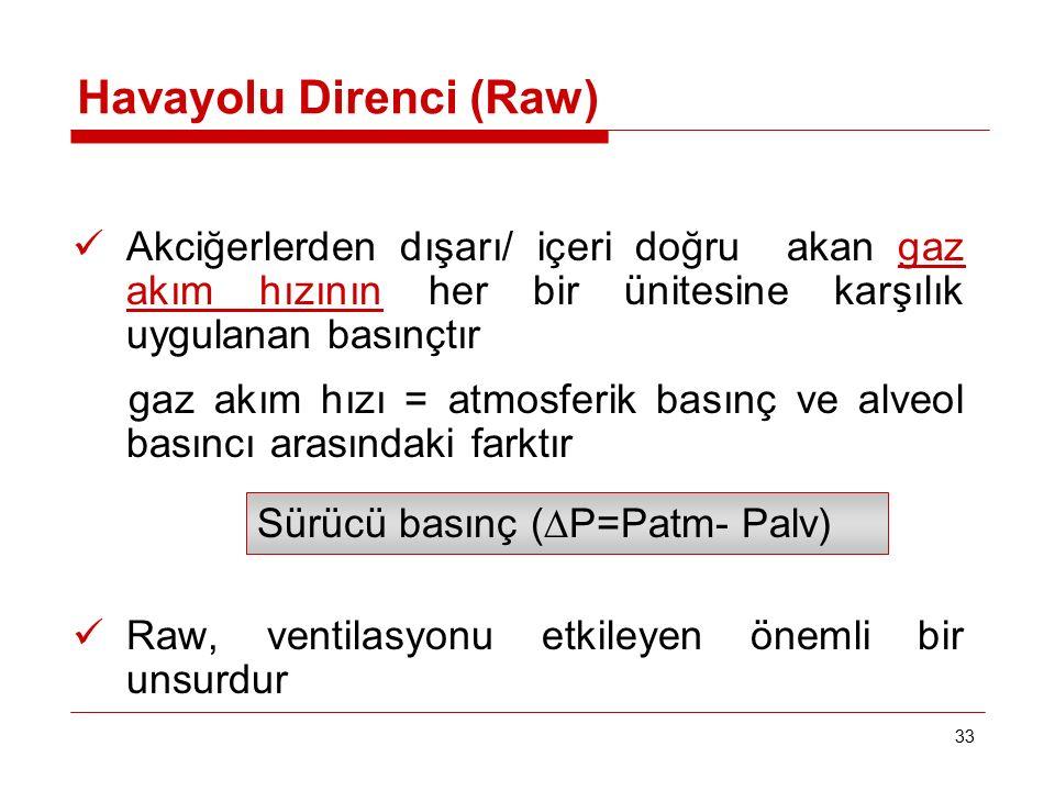 Havayolu Direnci (Raw)
