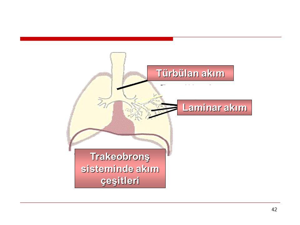 Trakeobronş sisteminde akım çeşitleri